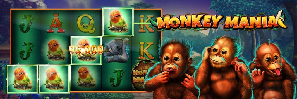 Monkey Mania - Presenter